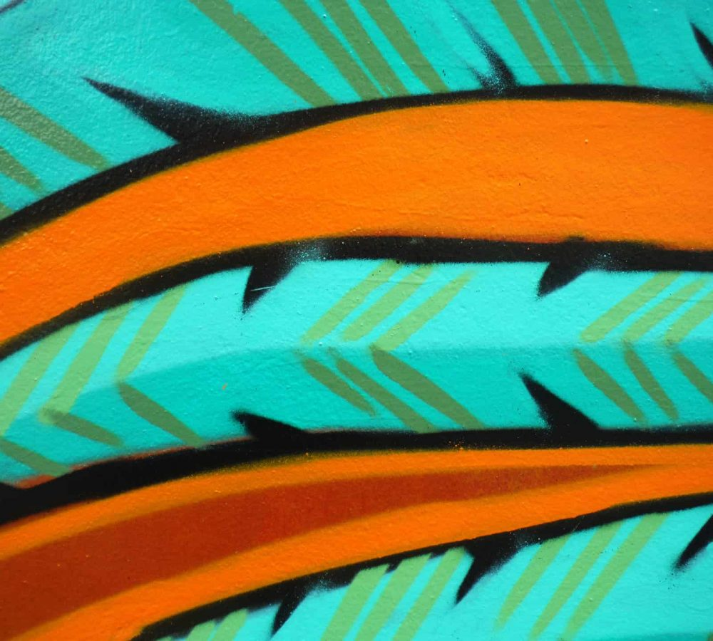 graffiti detail-feathers